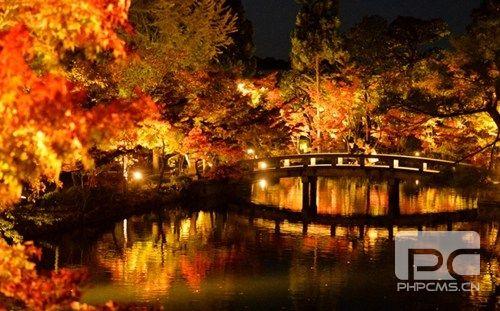 日本京都举行夜间赏红叶活动